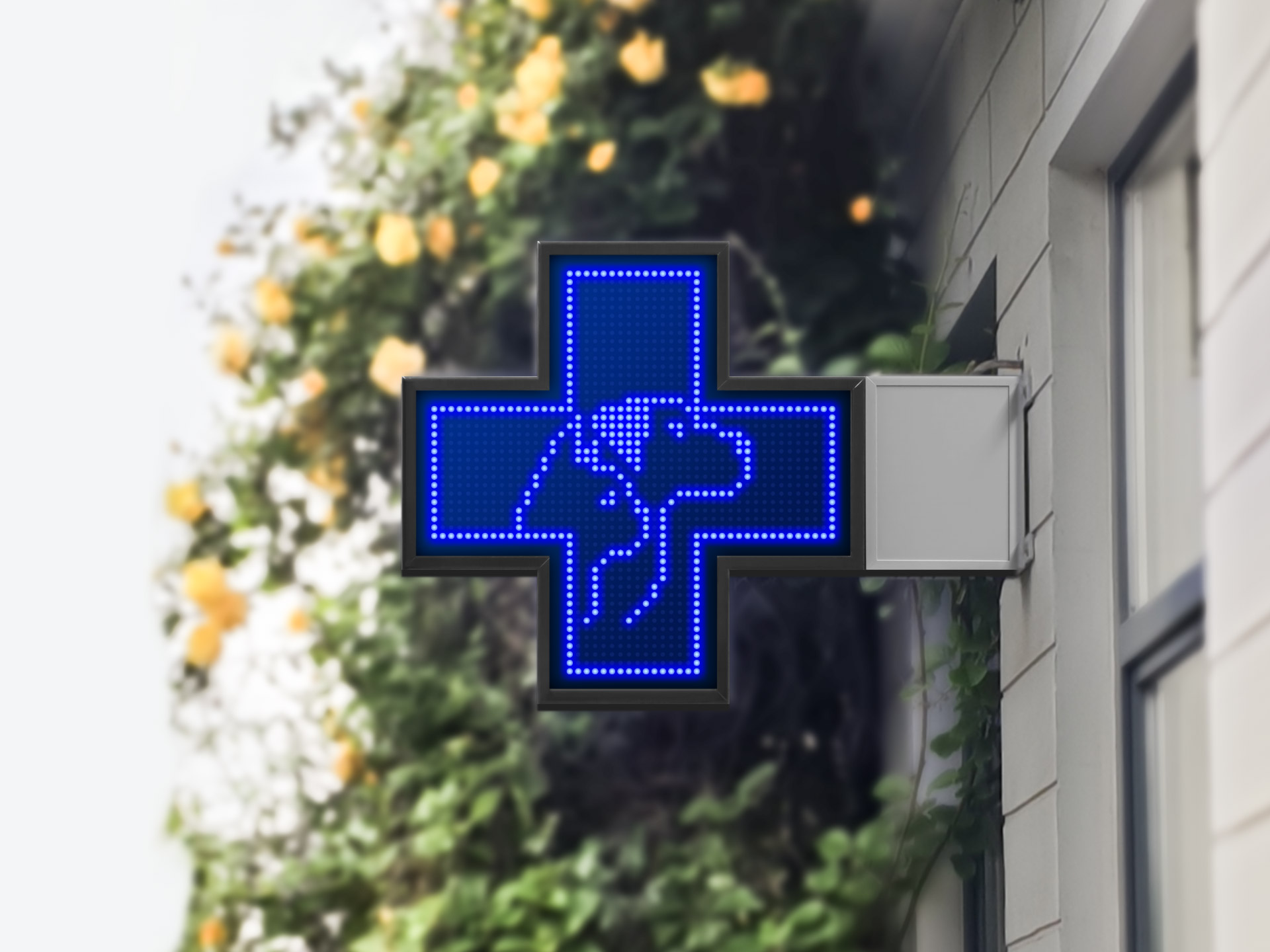 QLK LED Veterinary cross